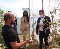 Mustafa Podržaćemo poljoprivrednike pogođene štetom u Vučitrnu