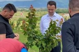 Devet - 9  miliona  evra  podrške  poljoprivrednicima