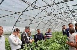 Investimet e MBPZHR-së dhe donatorëve gjermanë po rrisin prodhimtarinë bujqësore