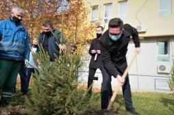 Ministri Mustafa mbështet aksionin e mbjelljes së 1.8 milionë fidanëve